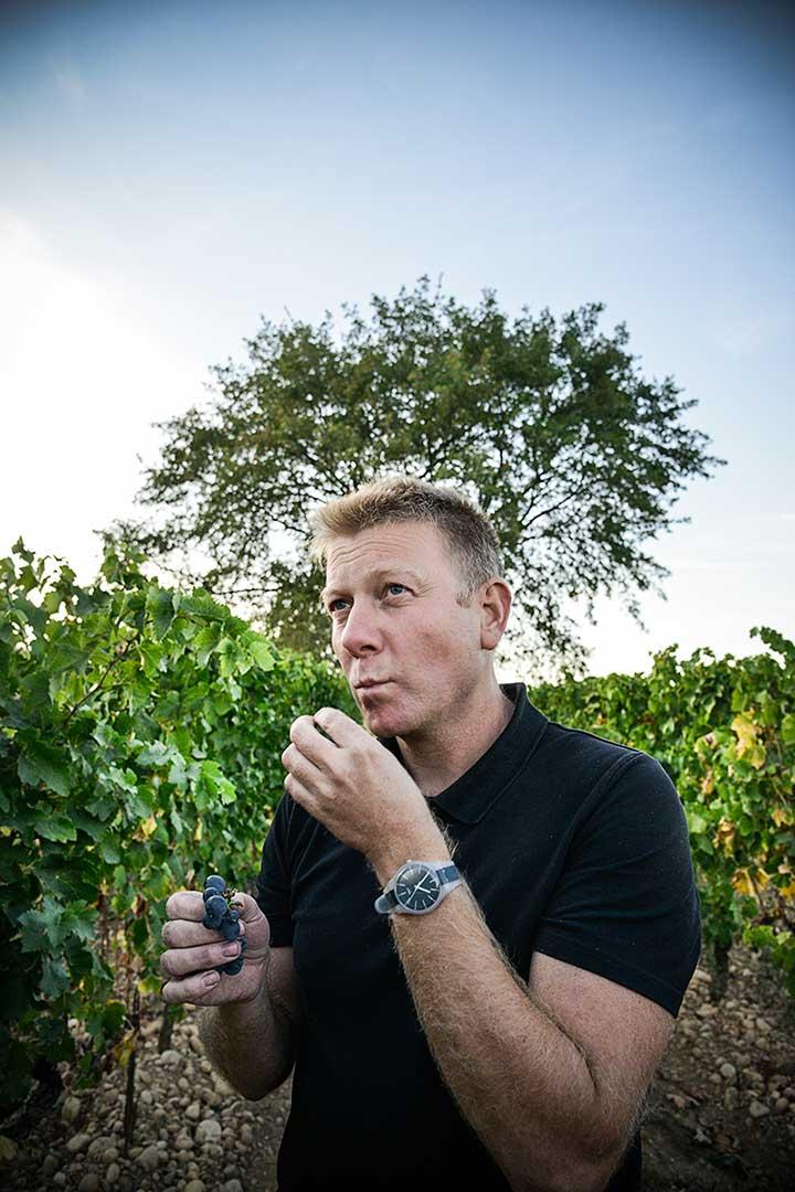 raisin, dégustation, vignoble, photo Emmanuel Perrin