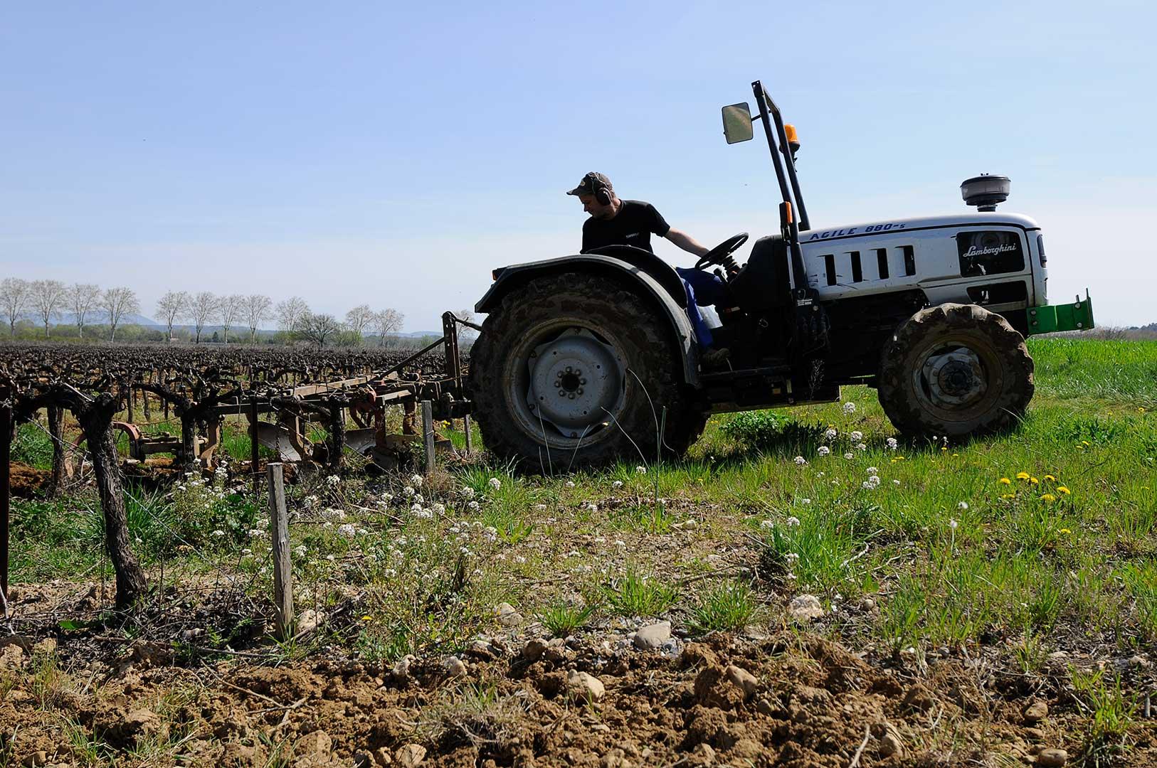 travail de la vigne, travail du sol, labour, vin bio, photo Emmanuel Perrin