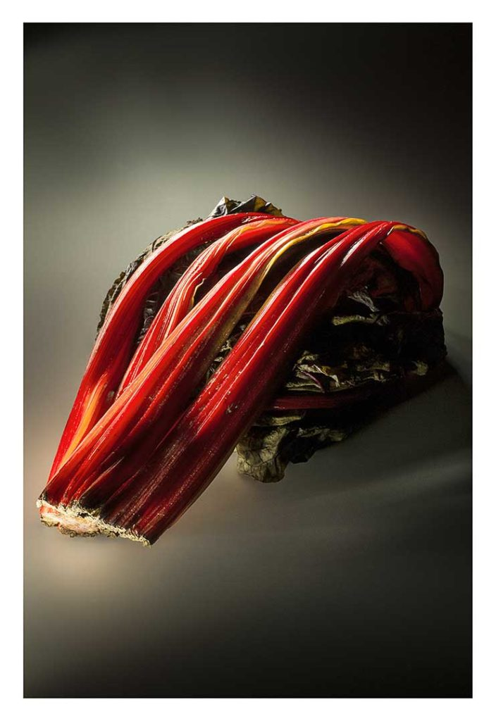 blettes, bio, photo Emmanuel Perrin