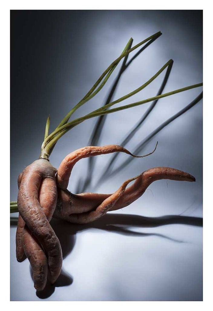 carottes, bio, photo Emmanuel Perrin